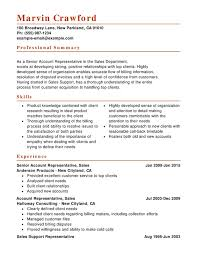 sales combination resume resume help