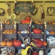 Pumpkin Picking Ct Best by Warrup U0027s Farm Pumpkin Picking U0026 Hayrides Redding Ct Photos U0026