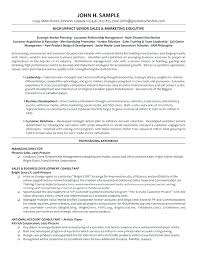 Best Executive Resume Examples Of Director Call Center Manager 8