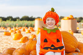Pumpkin Patch South Austin Tx by 5 Charming Pumpkin Patches Around Georgetown Homes For Sale In