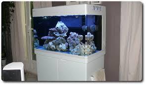 aquarium nano eau de mer petit aquarium design eau de mer aqualign emotion d couvrez notre