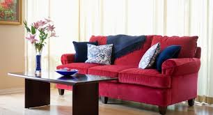 Red Sofa Living Room Ideas by Red Accent Pillows For Sofa Teachfamilies Org