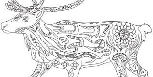 Medium Size Of Coloring Pagesarctic Colouring Pages Ice Floe Page Xdj Arctic