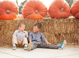 Pumpkin Farms In Belleville Illinois by Grafton Farm Reopens Summer 2017 U2014 Eckert U0027s Family Farms And