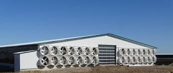 Barn Ventilation Stainless Steel Vent Caps Wall Vents Roof Cfd Simulation Poultry Barn Venlation Venlation System Smarthorsetubes For Fresh Air Cditions In Calf Barn Dairy Lane Systems Individual Systems Stables Vetsmarttubes Gmbh Designing Healthy Your Blackburn Schaefer Our Aquaponic Journey Part Three Adding A Window To Professional Grade Products 9800394 Shutter Exhaust Fan Garage Definition Sketches Naturally Ventilated Above Slotted Suppliers And
