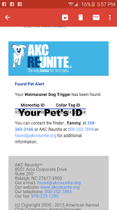AKC Reunite | Owyheestar Weimaraner's News Akc Reunite Home Facebook Npr Shop Promo Code Free Shipping Sheboygan Sun 613 Pages 1 32 Text Version Fliphtml5 Uldaseethatiktk Urlscanio Pet Microchip Scanner Universal Handheld Animal Chip Reader Portable Rfid Supports For Iso 411785 Fdxb And Id64 Chewycom Coupon Codes Door Heat Stopper Giant Bicycles Com Fitness Zone Bred With Heart Faqs Owyheestar Weimaraners News Pizza Hut Big Dinner Box Enterprise 20 Aaa