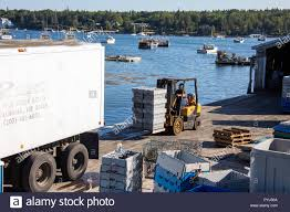100 Southwest Truck And Trailer Loading Live Lobsters On A Truck In Harbor Maine