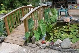 Miami Valley Water Garden Society