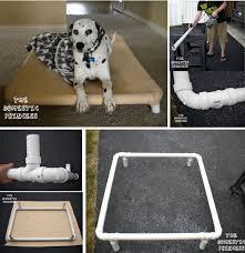 851 best diy dog projects images on pinterest diy dog dog stuff