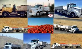 Here's A Morning Star Montage I Put Together. | Tomato Truck ... Allnew Kenworth T880 T680 52inch Sleeper 7 Drayage Instagram Photos And Videos Autgramcom Bay Crossings Mike Lowrie Out Of Dixon Also Hauls Matoes In Their Sharp San Joaquin County Worknet Sckton Ca 2018 Are You Entitled To Overtime If Are A Trucker California Untitled Antoni Freight Express Antonifreight Profile Picbear Hashtag On Twitter With T800 Set Images Tagged Dafpower Instagram
