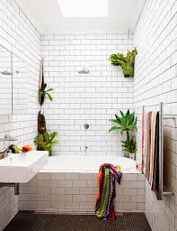 Best Plant For Bathroom Feng Shui by Bathroom Design Wonderful Best Plants For Bathroom Small House