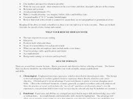 Brief Summary Of Background For Resume Example Professional Examples Best