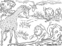 African Animals Coloring Pages Desert