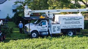 Singletary's Landscaping And Tree Services In Bladen County, NC Best Residential Lawn Care Truck Youtube Custom Beds Texas Trailers For Sale Gainesville Fl Landscaping Truck And Trailer Wrap Google Search Wraps Pinterest How To Turn Fleets Into Marketing Machines Isuzu Npr Trucks By Owner Resource Vlt Gallery Value Used Super Youtube Javamegahantiekcom 1977 Chevrolet Ck Scottsdale For Sale Near Tampa Florida Spray Sprayers Solutions Technologies About Cousin Lawncare Piscataway Nj Beautiful Hot Rod Blazer Gta Wiki New Cars And