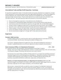 Sales Directors Elegant Sample Executive Resume New T