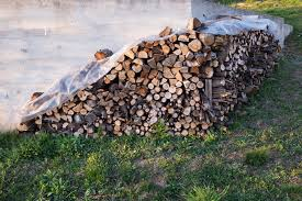 brennholz lagern so bleibt es trocken und schimmelfrei