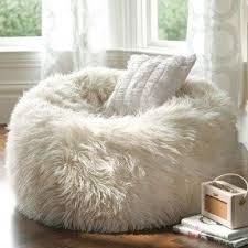 Ahhhh A Furry Bean Bag Chair Michelle Dewitt You Need