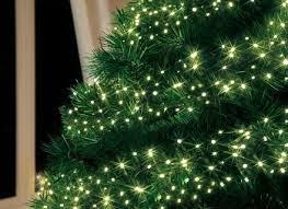 Pre Lit Pencil Cashmere Christmas Tree by 7 Ft Pre Lit Green Pencil Cashmere Artificial Christmas Tree Fia
