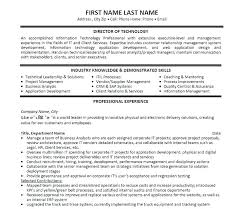 Information Technology Resumes Resume Examples Beautiful Best Samples 2016