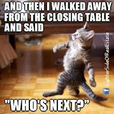 Cat Walking Like A Boss Funny Pictures Hilarious Jokes Meme Humor Walmart Fails Mine And Rs Walk When We Into Party Lol