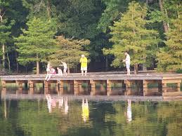 Lake D Arbonne State Park a Louisiana park located near West Monroe
