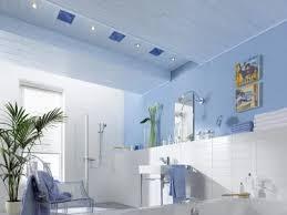 welche decke für das badezimmer bauredakteur de