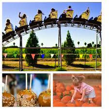 Mother Nature Pumpkin Patch Gilbert Az by Hello Fall Nice To See You We Love This Time Of Year Visit The