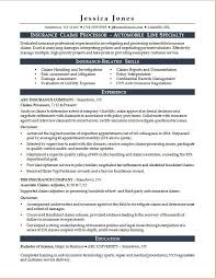Sample Resume For An Insurance Claims Processor
