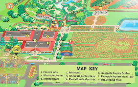 Dole Plantation Review Tips for Visiting the World s st Maze