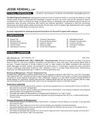Extraordinary Resume Samples For Professionals With Additional Example Specific Skills Area Ixiplay Free