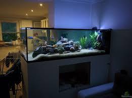 aquarium wohnzimmer ideen wohnzimmermöbel ideen
