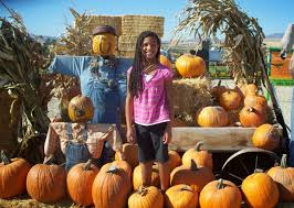 Pumpkin Patch Utah by Phaedra U0027s Adventures Fall Fun For The Locals