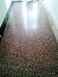 Terrazzo Tiled Floor After Cleaning In Southbourne