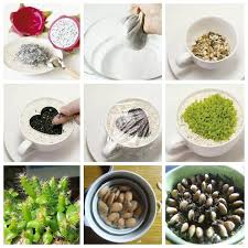 d馗orer sa chambre d馗orer sa cuisine 100 images 日式試吃上菜dishdish dining
