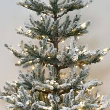 6ft Pre Lit Christmas Trees Black by Pre Lit Green Snow Effect Real Feel Pe Imperial Spruce Artificial