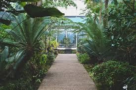 Looking for a Warm Winter Escape Matthaei Botanical Gardens is