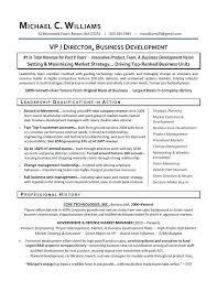 Business Developer Resume Van Modeler