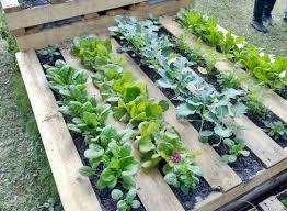 25 Amazing DIY Projects To Repurpose Pallets Into Garden Planters Wood Pallet