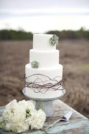 Succulents And Brambles Wedding Cake