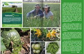 Organic Pumpkin Seeds Australia by Article Australian Business News Source Long Legs Natures Haven