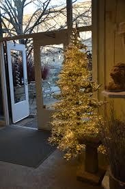 Longest Lasting Christmas Tree by Luminous Dirt Simple