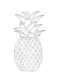 28 Collection Of Pineapple Drawings Tumblr