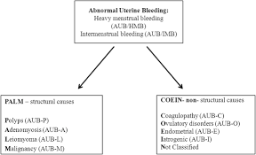 Shedding Of Uterine Lining by The Medical Management Of Abnormal Uterine Bleeding In