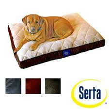 Serta Dog Bed by 79 Best Diva U0027s Fab Dog Beds U0026 Furiture Images On Pinterest Pet