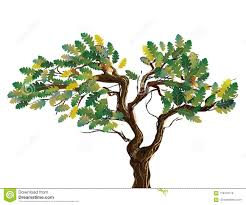 Branches Of Different Trees Mountain Ash, Maple, Aspen With An Open ... Expert Claims Mysterious Bent Trees Were Secret Native Americans Crooked Forest Wikipedia Stp77089 Greenery And Tree Trunks In Forest Karjat Mahashtra Indian Bent Trees History Or Legend Show Me Oz Larry The Lorry More Big Trucks For Children Geckos Garage New Trucks Bodies Equipment Trailers Seen At Wasteexpo How To Fix A Leaning Tree I Love The Wooden Beds Rarin To Go Ford Mysterious Are Actually American Trail Markers Wind Stock Images 542 Photos Bend Diamonds Ieee Spectrum Black White Alamy