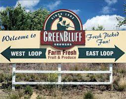 Greenbluff Pumpkin Patch Spokane Wa Hours by Alpaca Farm At Green Bluff Actionanalysisref Farm Pinterest