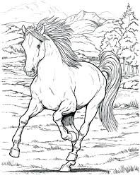 Realistic Horse Coloring Pages Free Wild To Print Arabian