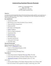 Classy Resume Sample For Underwriter In Insurance Objective