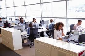 bureau paysager les bureaux paysagers délicieusement clairs ou horriblement