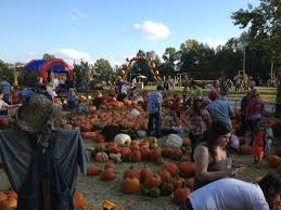 Pumpkin Patch Fort Collins by Don U0027t Miss These 10 Great Arkansas Pumpkin Patches This Fall